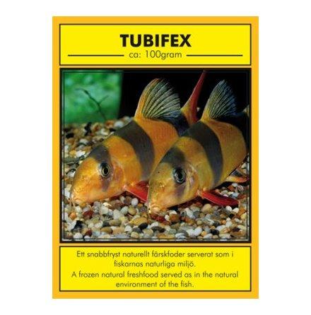 Tubifex