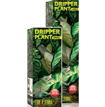 Dripper Plant L