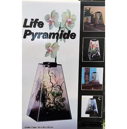 Pyramidterrarium L