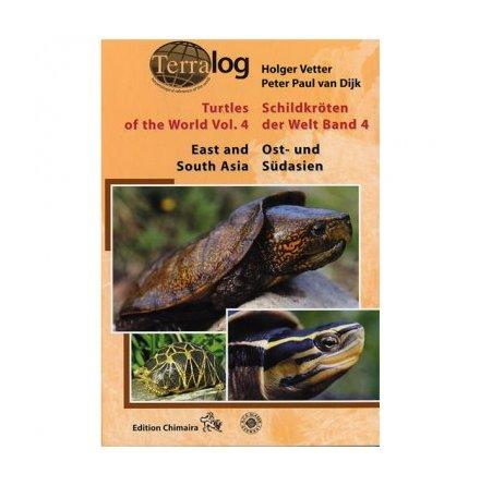 Turtles vol 3